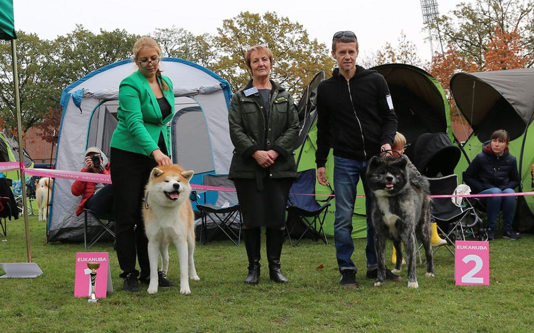 XXVIII Club Show of Spitz and Primitive Breed Dogs